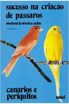 Sucesso na Criaçao de Pássaros