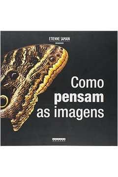 COMO PENSAM AS IMAGENS