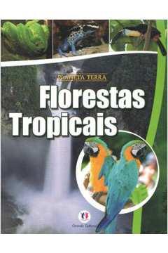 Florestas Tropicais Planeta Terra