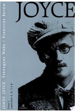 Finnegans Wake : Vol. 3 (Prêmio Jabuti 2004 e Prêmio APCA 2003)