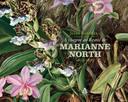 A Viagem ao Brasil de Marianne North 1872-1873