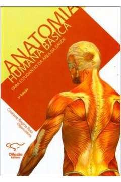 Anatomia Humana Básica: Para Estudantes da Área da Saúde