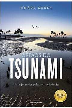Orfaos do Tsunami uma Jornada pela Sobrevivencia